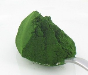 chlorella proszek 300x257 Chlorella   opiniones sobre algas marinas para Weight Loss
