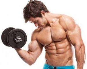 mięśnie silownia musculin active
